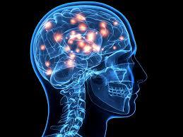 Neuropsychiatry | Great Neck Center for Sleep, TMS & Mind-Body Wellness